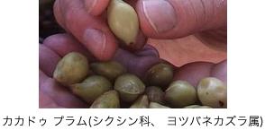 item2_2